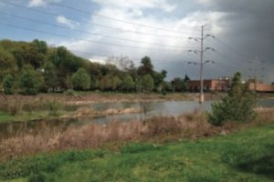 Four Mile Run Restoration Project Update